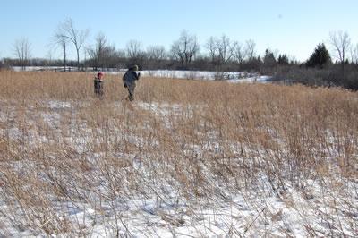 February2010_field